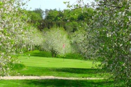 fynske golfbaner blommenslyst golfklub